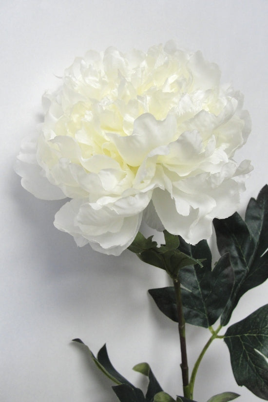 Faux Plant Winter Peony White