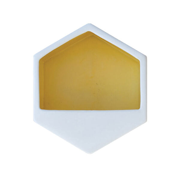 Hexagon Yellow Large Wall Planter