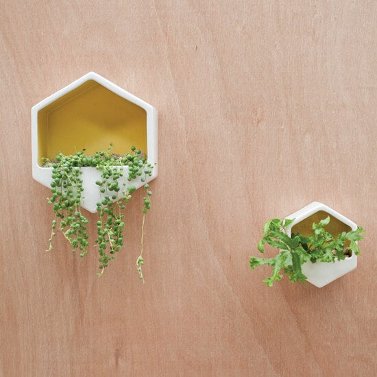 Planter Wall Hexagon Yellow Small