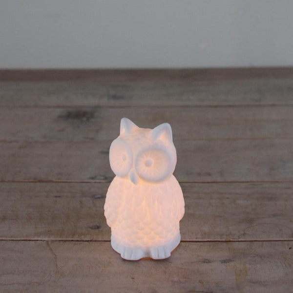 Light LED Owl
