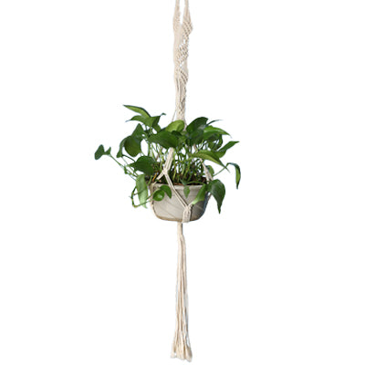 Plant Hanger Macrame Knotted