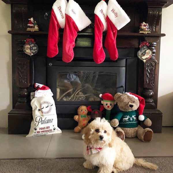 Personalised Christmas Pet Santa Sacks - Dog / Cat