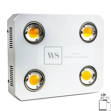 CTX4WC-600W Wifi Control LED Lights Whiti Smart Solutions
