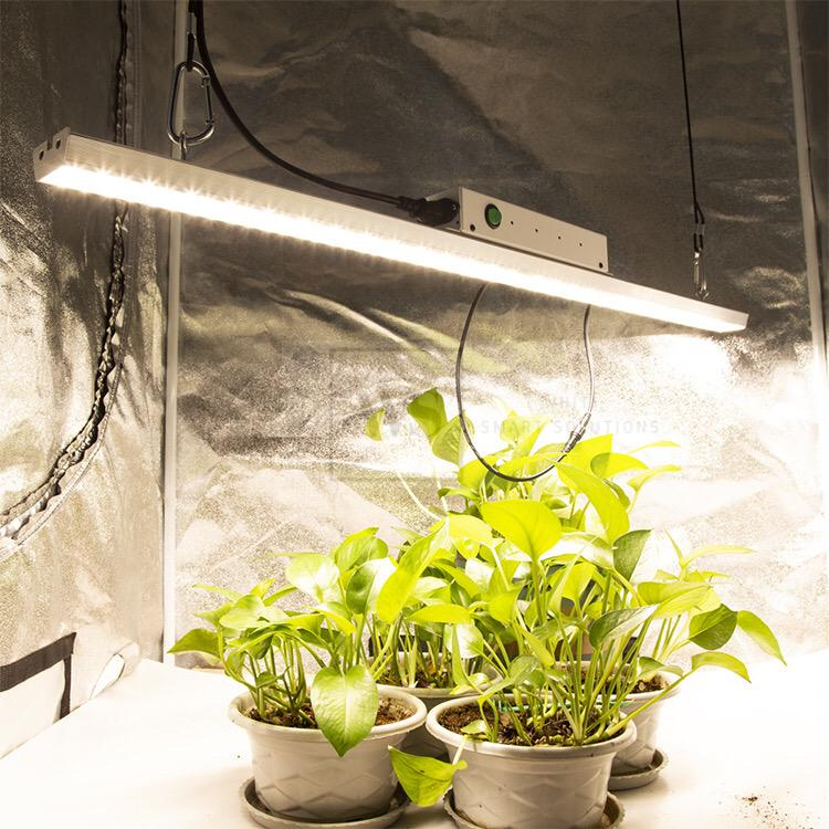 TB01S-100W Hydroponic Whiti LED Grow Light Standard Control LED Lights Whiti Smart Solutions