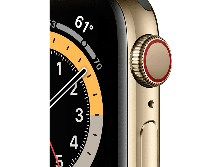 Apple Watch Series 6, GPS+CELL, 40 mm, Caja de Acero inoxidable en oro, Correa deportiva verde chipre