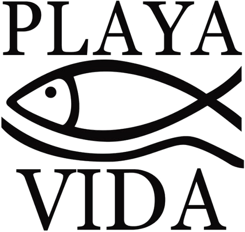 playa vida favicon