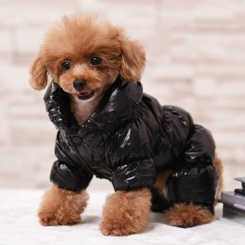 Pet Pally Classic Puffy Padded Warm Waterproof Fashionable Jacket for Dogs and Cats
