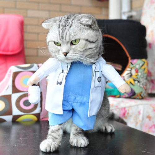 Pet Pally Cool Funny Cat Doctor Anatomy Costume Clothes for Party Suit