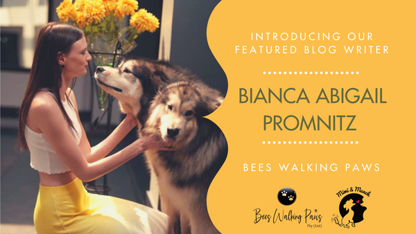Introducing Bianca Abigail Promnitz- The African Dog Whisperer!