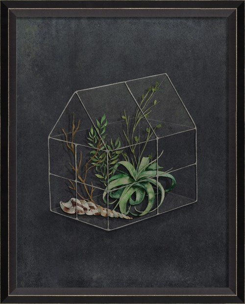 The Beauty of A Garden Sm Terrarium Glass Framed Print