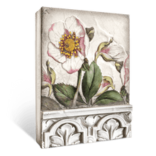 Load image into Gallery viewer, Hellebores Memory Block T501