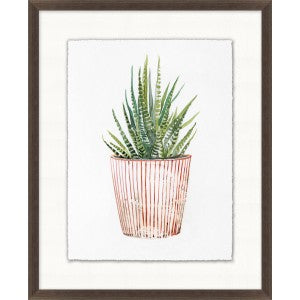 Decorated Succulent 2 Glass Framed Print