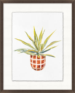 Decorated Succulent 3 Glass Framed Print