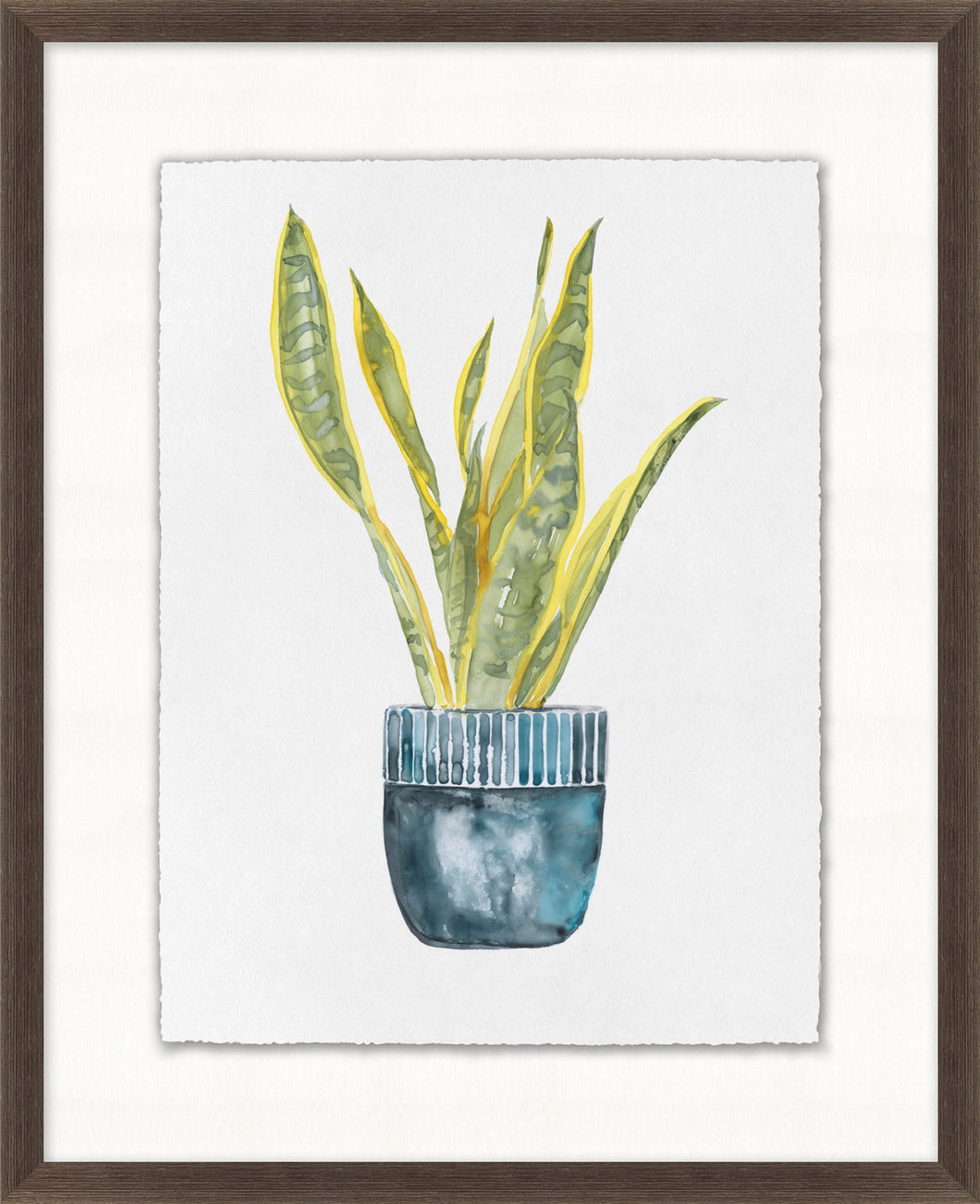 Decorated Succulent 4 Glass Framed Print