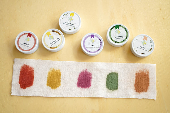 Printing with Natural Dyes Kit - LIGHT COLORS on COTTON