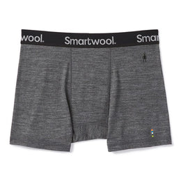Smartwool Merino Sport 150 Boxer Brief - Men's
