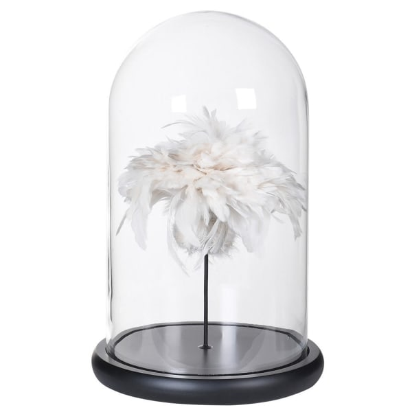 Feathers in Glass Dome