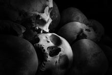 Load image into Gallery viewer, Cambodia Skulls - Metal Print