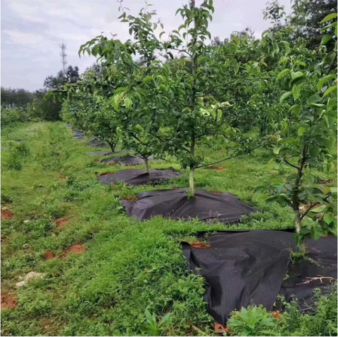Ecological Weed Control Cloth
