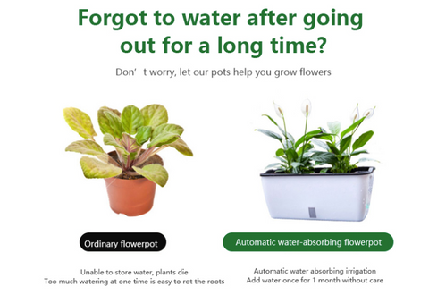 Automatic Watering Planter Pot