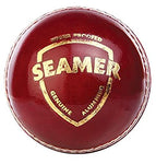 SG Seamer Leather Cricket Ball
