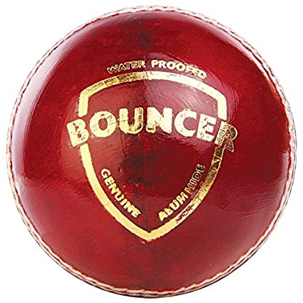 SG BOUNCER LEATHER BALL