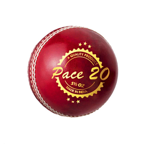 DSC Pace 20 Cricket Leather Ball (Red)