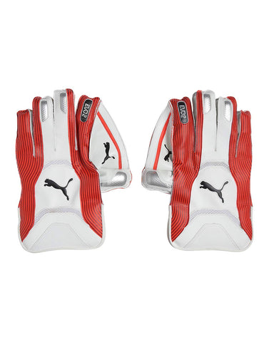Puma EVO 2 Wicket Keeper Glove