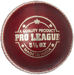 DSC Pro League Cricket Leather Ball (Red)
