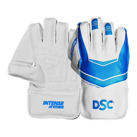 DSC Intense Attitude Cricket Wicket Keeping Gloves