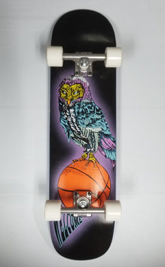 Welcome Hooter Shooter Bunyip Mid 8.125 Custom Complete Skateboard Cruiser
