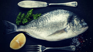 Fish Collagen Health Benefits: What do the Studies Say?