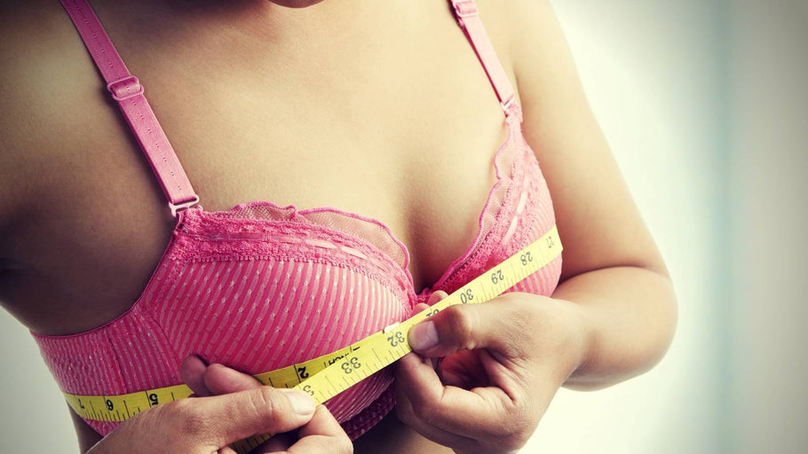 Herbs to Increase Breast Size: How to Enlarge Your Breasts Naturally Using Botanicals