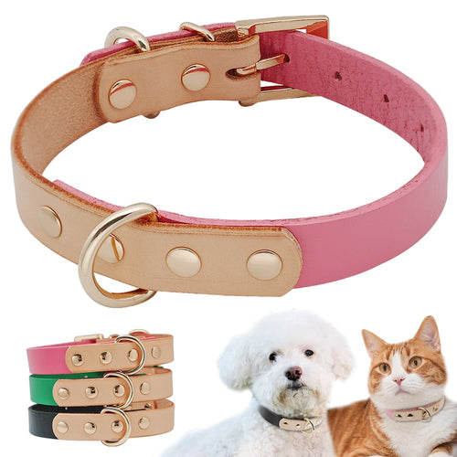 Luxury Leather Pet Collar