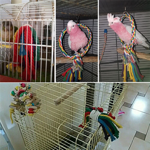 Bird Toy, Perch and Braided Budgie