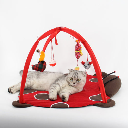 Cat Play and Sleep Mat