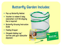 Butterfly Garden - Grow Real Butterflies! (with voucher for live caterpillars)