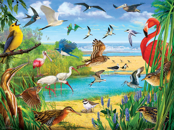 Florida Birds, 1000pc Puzzle