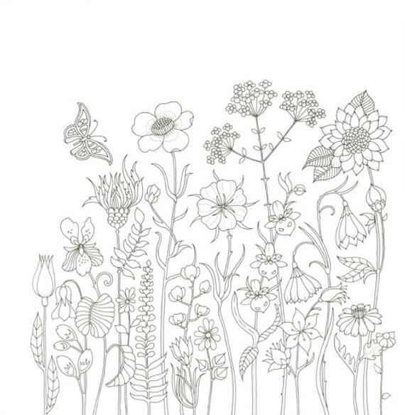 World Of Flowers By Johanna Basford, (adult Coloring Book) – Silly Munchkins