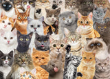 All The Cats Jigsaw Puzzle, 1000pc