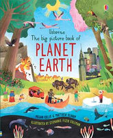 Big Picture Book of Planet Earth by Usborne