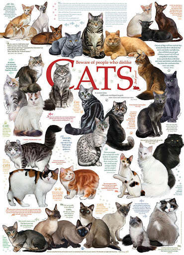Cat Quotes 1000pc Puzzle by Cobble Hill