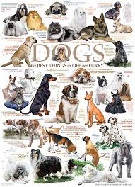 Dog Quotes, 500pc Puzzle by Cobble Hill
