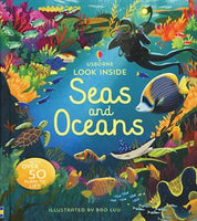 Look Inside Seas and Oceans by Usborne