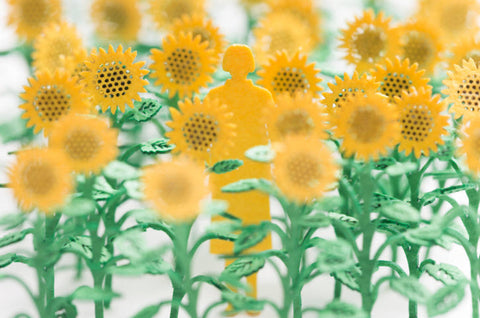 Architectural Model Sunflowers