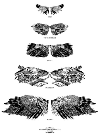 British Bird Wingspans Print By Chrysa Koukoura