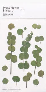 Eucalyptus Stickers Pressed Flowers