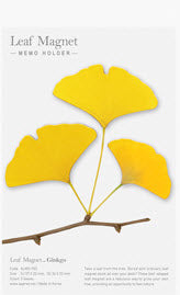 Gingko Leaf Magnet