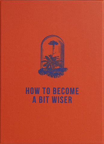 How to Become a Bit Wiser