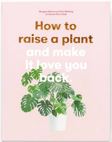 How To Raise A Plant And Make It Like You Back